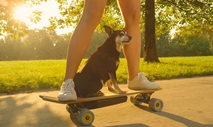 best electric skateboard kit